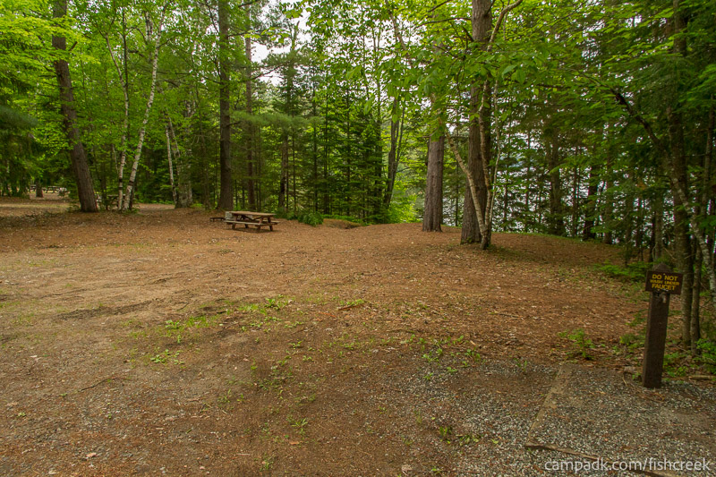 Campsite Photo of Site 165 at Fish Creek Pond Campground, New York - Looking at Site from Road
