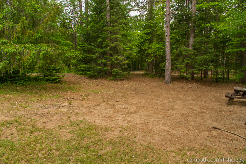 Campsite Photo of Site 166 at Fish Creek Pond Campground, New York - Cross Site View