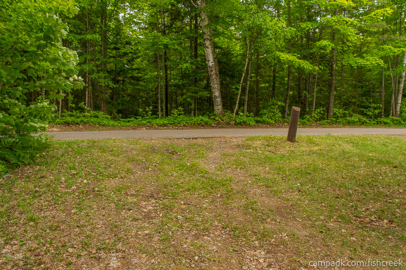 Campsite Photo of Site 167 at Fish Creek Pond Campground, New York - Looking Back Towards Road