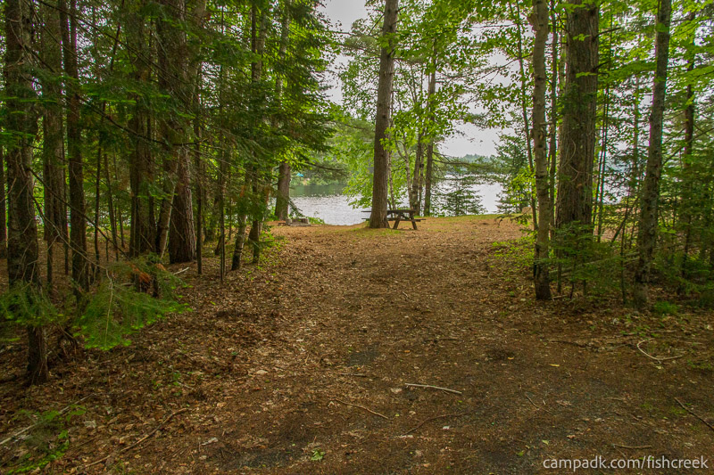 Campsite Photo of Site 169 at Fish Creek Pond Campground, New York - Looking at Site from Road