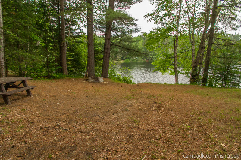 Campsite Photo of Site 169 at Fish Creek Pond Campground, New York - Looking at Site from Part Way In