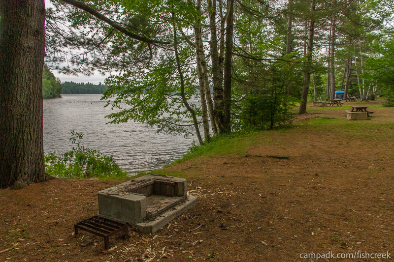 Campsite Photo of Site 169 at Fish Creek Pond Campground, New York - Cross Site View