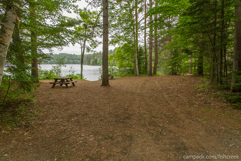 Campsite Photo of Site 262 at Fish Creek Pond Campground, New York - Looking at Site from Road