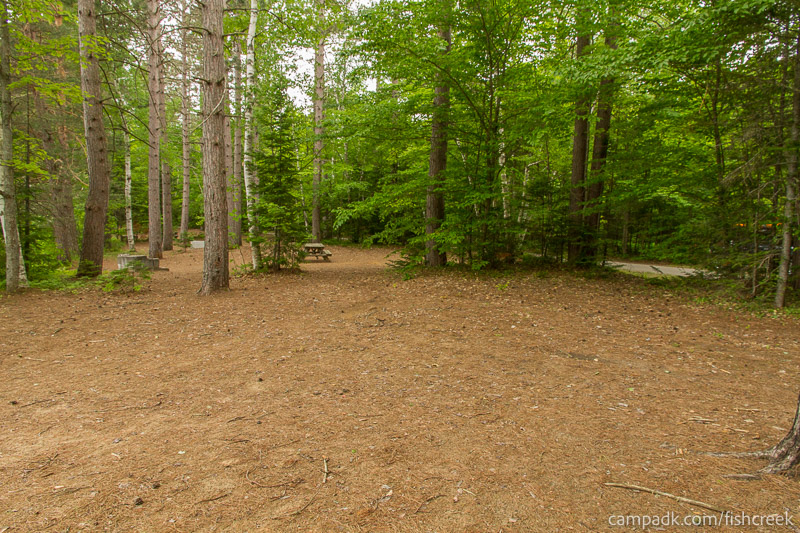 Campsite Photo of Site 262 at Fish Creek Pond Campground, New York - Cross Site View