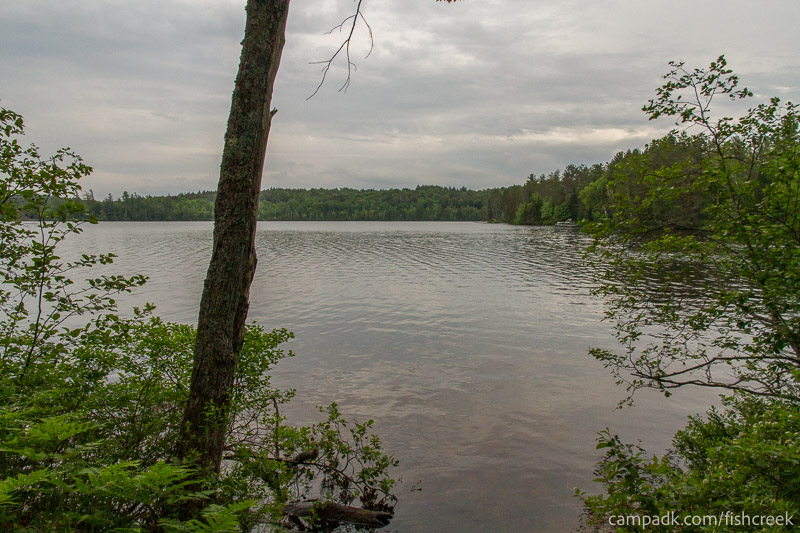 Campsite Photo of Site 262 at Fish Creek Pond Campground, New York - View from Shoreline