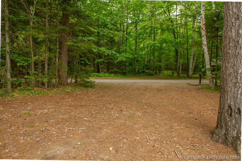 Campsite Photo of Site 262 at Fish Creek Pond Campground, New York - Looking Back Towards Road