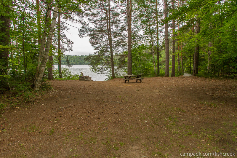 Campsite Photo of Site 263 at Fish Creek Pond Campground, New York - Looking at Site from Road