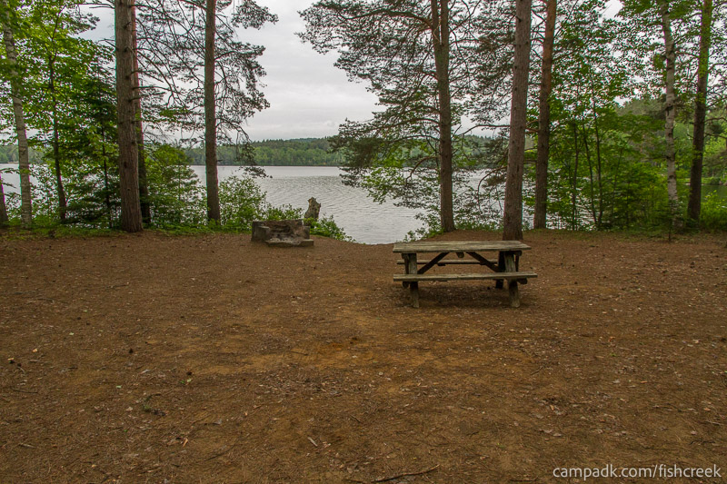 Campsite Photo of Site 263 at Fish Creek Pond Campground, New York - Looking at Site from Part Way In