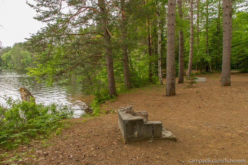 Campsite Photo of Site 263 at Fish Creek Pond Campground, New York - Cross Site View