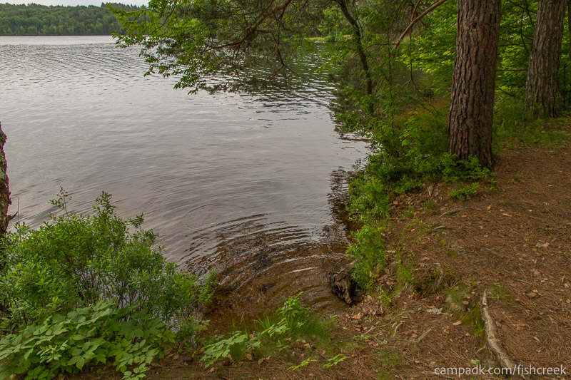 Campsite Photo of Site 263 at Fish Creek Pond Campground, New York - Shoreline