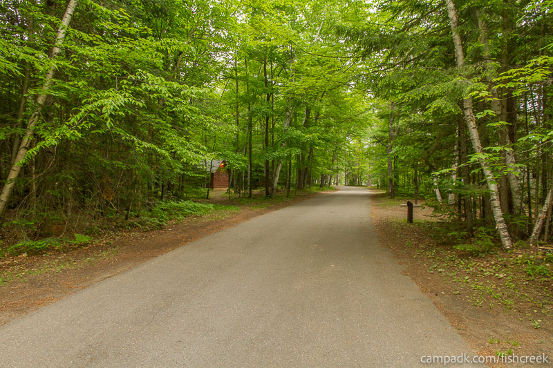 Campsite Photo of Site 263 at Fish Creek Pond Campground, New York - View Down Road from Campsite