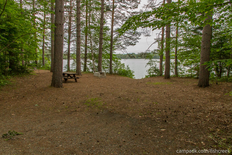 Campsite Photo of Site 264 at Fish Creek Pond Campground, New York - Looking at Site from Road