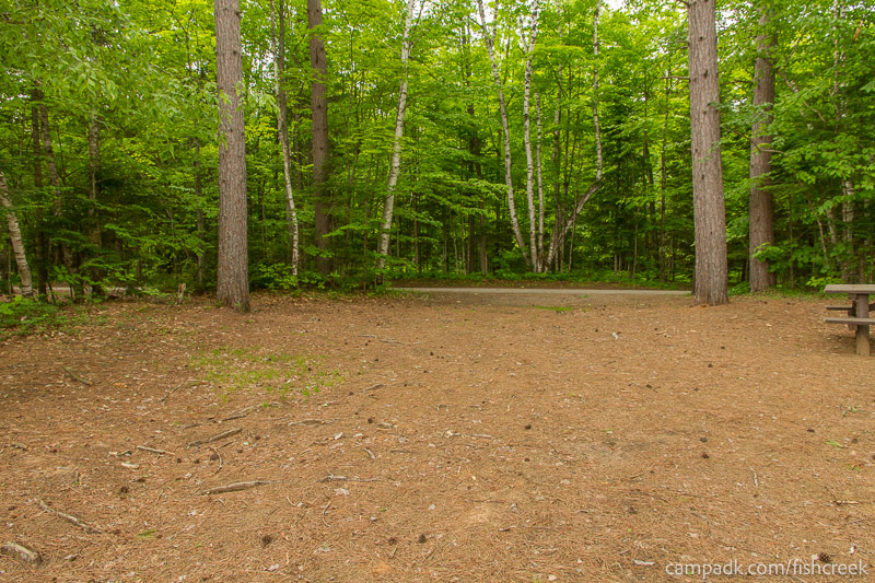 Campsite Photo of Site 264 at Fish Creek Pond Campground, New York - Looking Back Towards Road