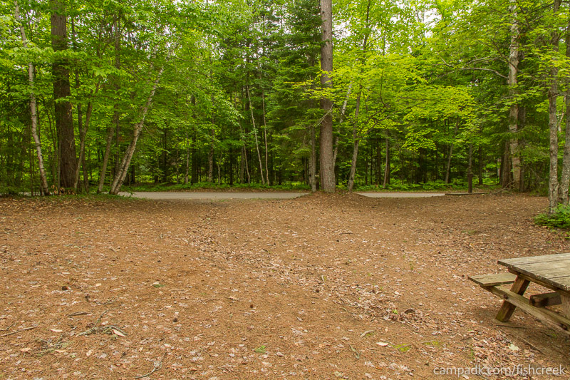 Campsite Photo of Site 266 at Fish Creek Pond Campground, New York - Looking Back Towards Road