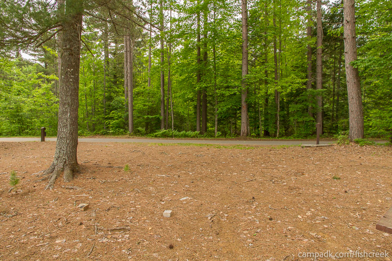 Campsite Photo of Site 270 at Fish Creek Pond Campground, New York - Looking Back Towards Road