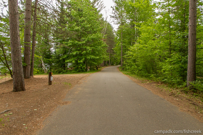 Campsite Photo of Site 270 at Fish Creek Pond Campground, New York - View Down Road from Campsite