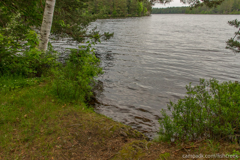 Campsite Photo of Site 273 at Fish Creek Pond Campground, New York - Shoreline