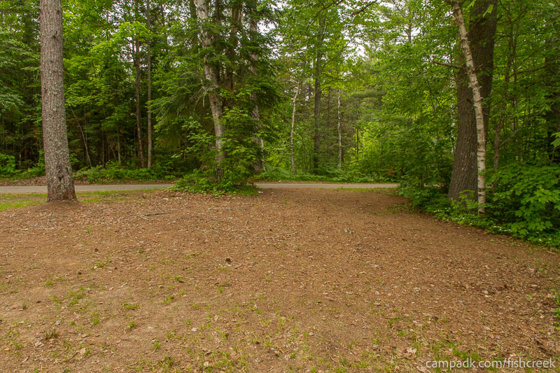 Campsite Photo of Site 273 at Fish Creek Pond Campground, New York - Looking Back Towards Road