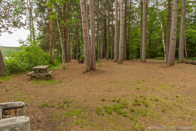 Campsite Photo of Site 274 at Fish Creek Pond Campground, New York - Cross Site View