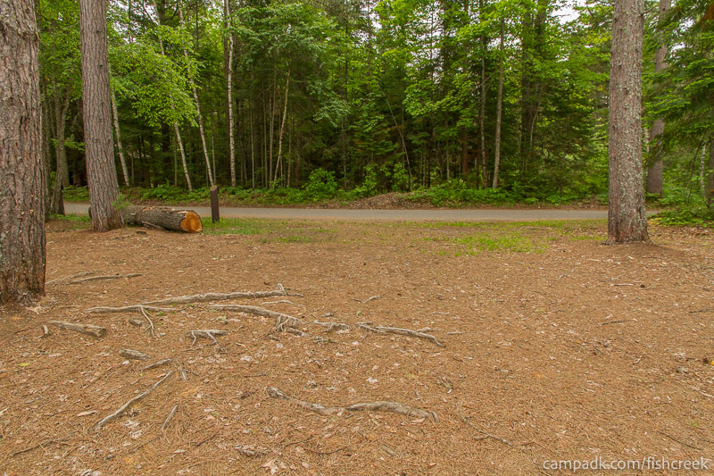 Campsite Photo of Site 274 at Fish Creek Pond Campground, New York - Looking Back Towards Road