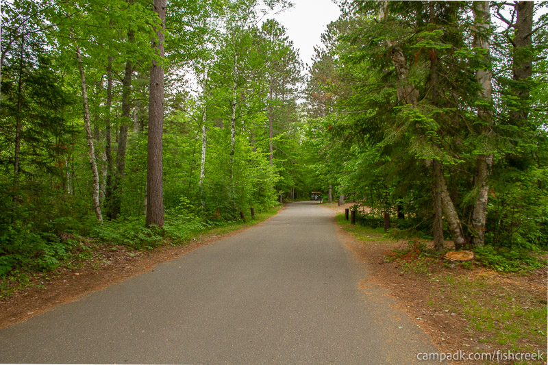 Campsite Photo of Site 274 at Fish Creek Pond Campground, New York - View Down Road from Campsite