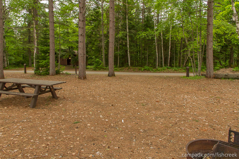 Campsite Photo of Site 275 at Fish Creek Pond Campground, New York - Looking Back Towards Road