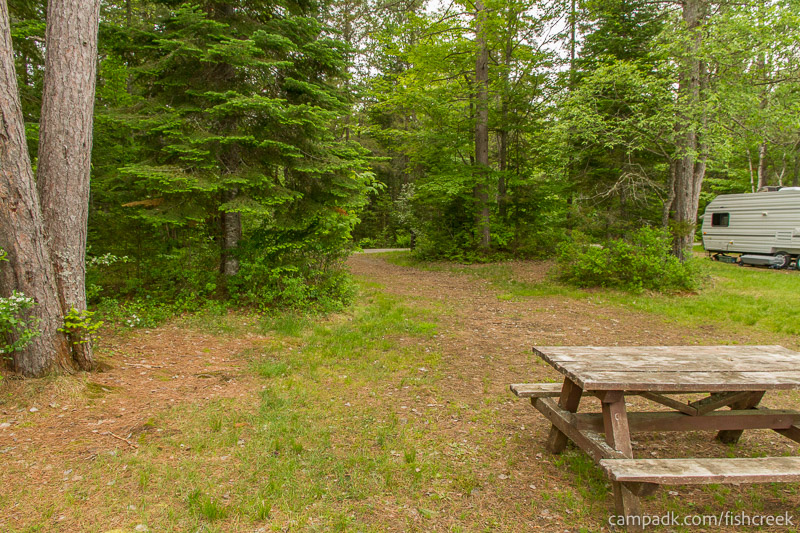 Campsite Photo of Site 283 at Fish Creek Pond Campground, New York - Looking Back Towards Road