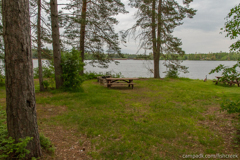 Campsite Photo of Site 285 at Fish Creek Pond Campground, New York - Looking at Site from Part Way In