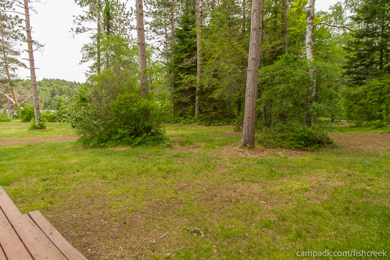 Campsite Photo of Site 285 at Fish Creek Pond Campground, New York - Cross Site View