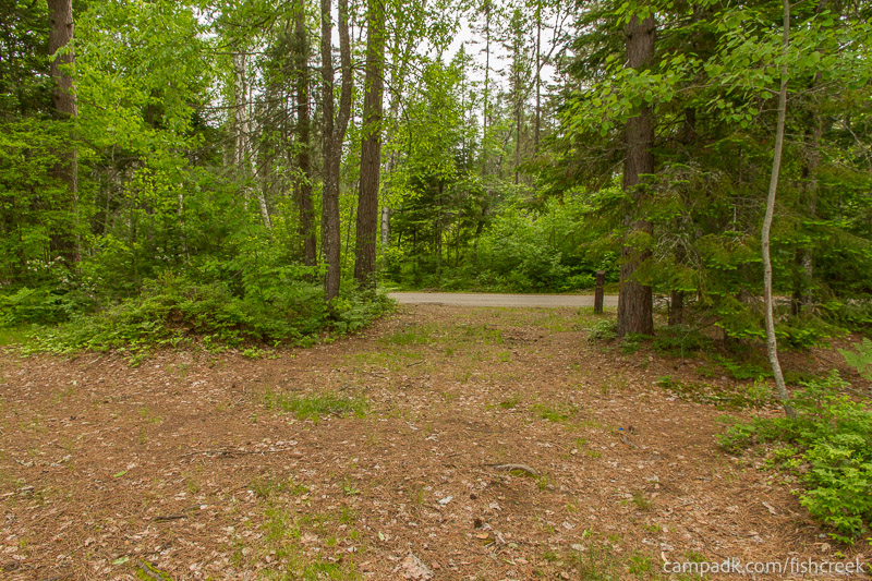 Campsite Photo of Site 285 at Fish Creek Pond Campground, New York - Looking Back Towards Road