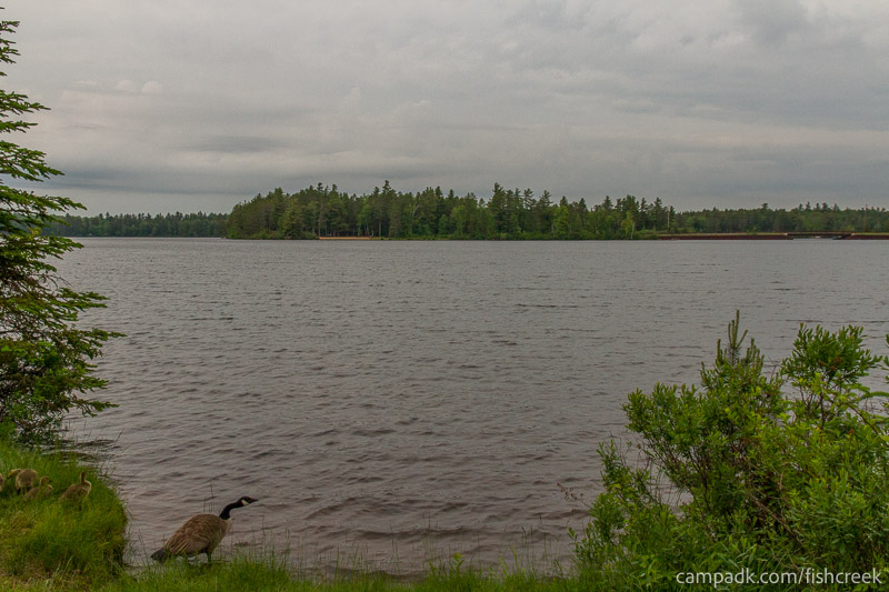 Campsite Photo of Site 287 at Fish Creek Pond Campground, New York - View from Shoreline