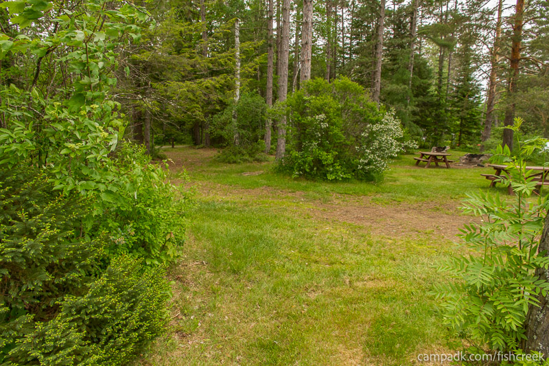 Campsite Photo of Site 287 at Fish Creek Pond Campground, New York - Looking Back Towards Road