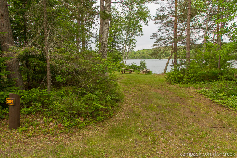 Campsite Photo of Site 289 at Fish Creek Pond Campground, New York - Looking at Site from Road Sign Visible