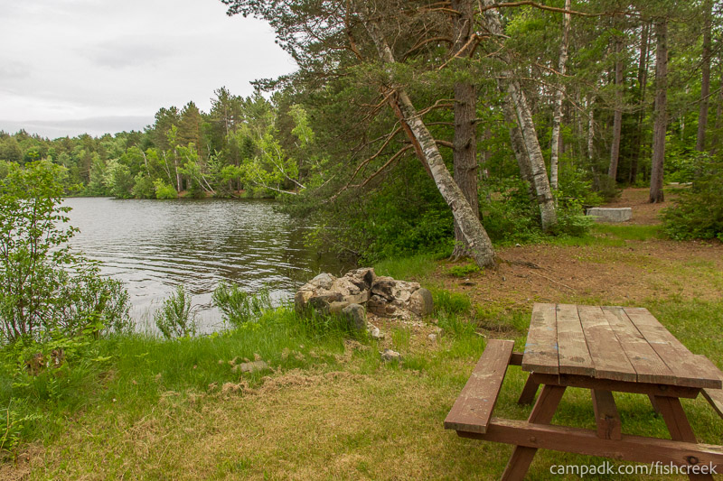 Campsite Photo of Site 289 at Fish Creek Pond Campground, New York - Cross Site View