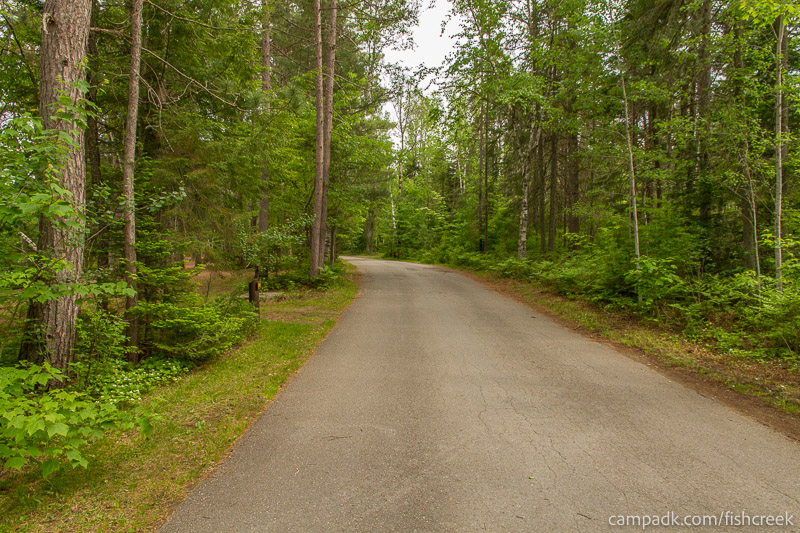 Campsite Photo of Site 289 at Fish Creek Pond Campground, New York - View Down Road from Campsite
