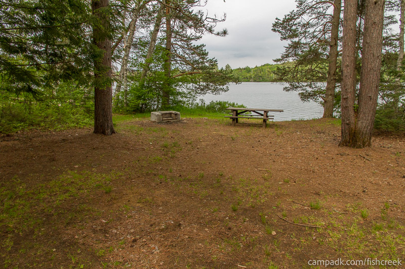 Campsite Photo of Site 290 at Fish Creek Pond Campground, New York - Looking at Site from Part Way In