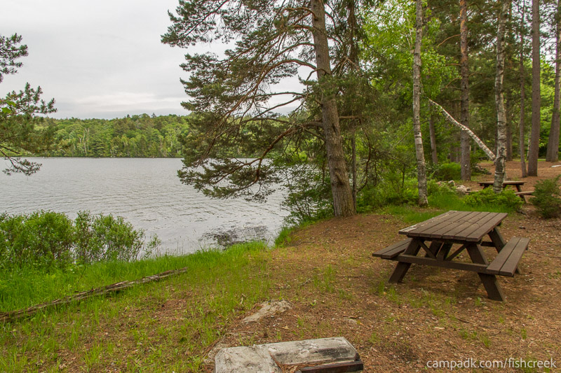 Campsite Photo of Site 290 at Fish Creek Pond Campground, New York - Cross Site View