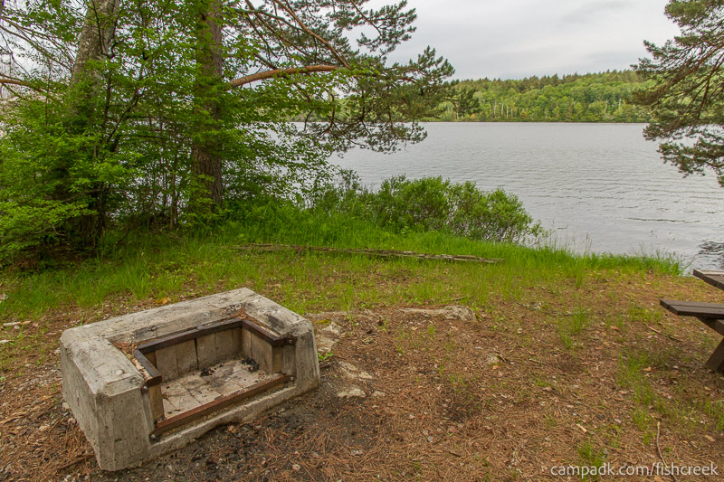 Campsite Photo of Site 290 at Fish Creek Pond Campground, New York - Fireplace View