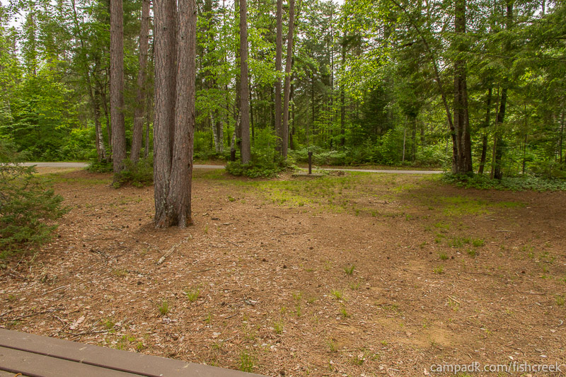 Campsite Photo of Site 290 at Fish Creek Pond Campground, New York - Looking Back Towards Road