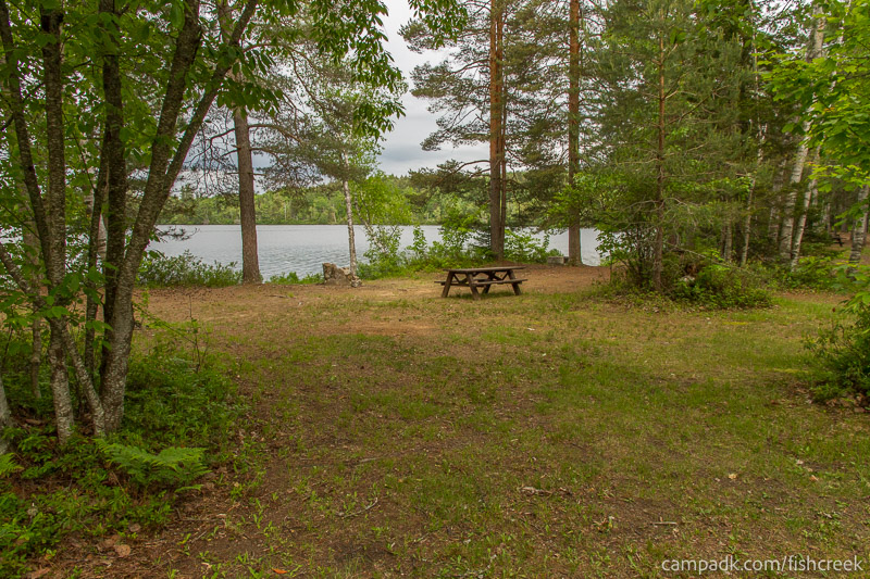 Campsite Photo of Site 294 at Fish Creek Pond Campground, New York - Looking at Site from Road