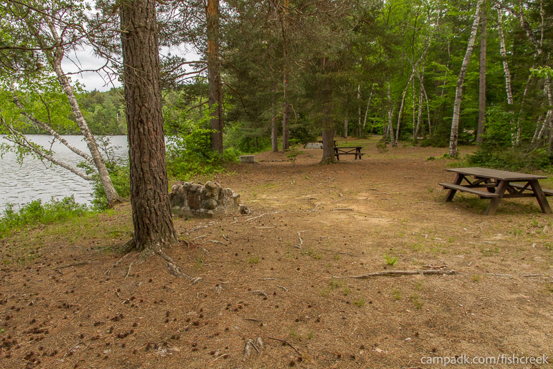 Campsite Photo of Site 294 at Fish Creek Pond Campground, New York - Cross Site View