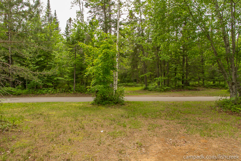 Campsite Photo of Site 294 at Fish Creek Pond Campground, New York - Looking Back Towards Road