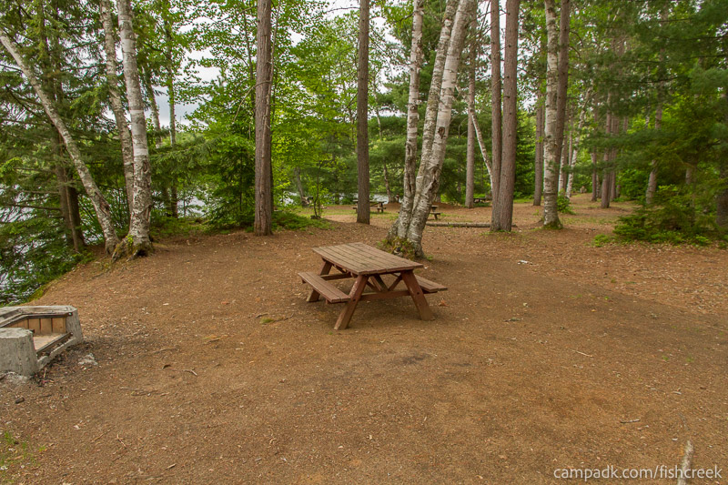 Campsite Photo of Site 299 at Fish Creek Pond Campground, New York - Cross Site View