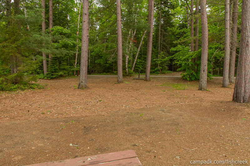 Campsite Photo of Site 299 at Fish Creek Pond Campground, New York - Looking Back Towards Road