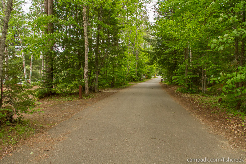 Campsite Photo of Site 299 at Fish Creek Pond Campground, New York - View Down Road from Campsite