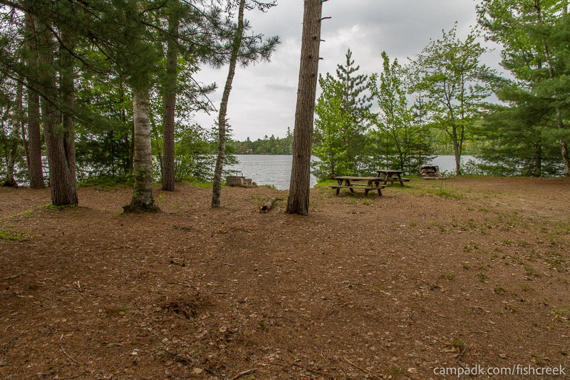 Campsite Photo of Site 300 at Fish Creek Pond Campground, New York - Looking at Site from Part Way In