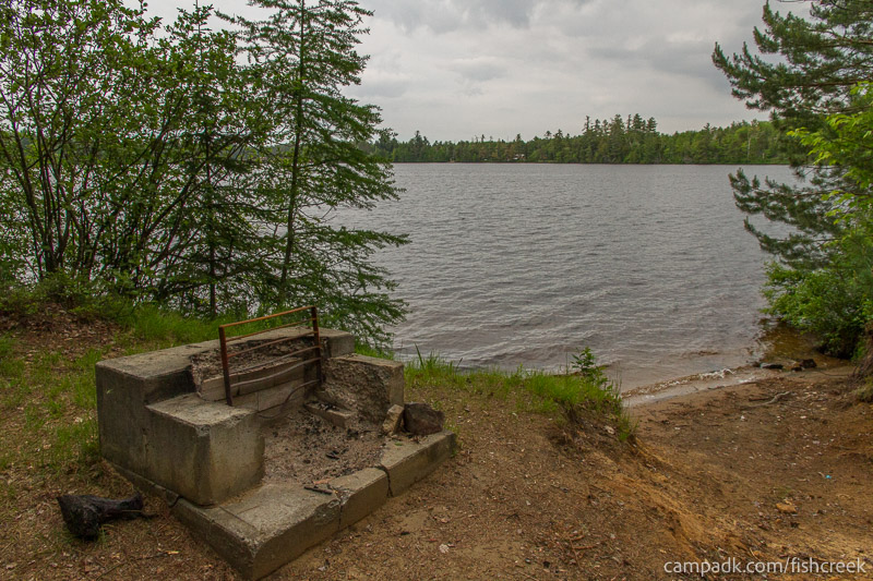 Campsite Photo of Site 300 at Fish Creek Pond Campground, New York - Fireplace View