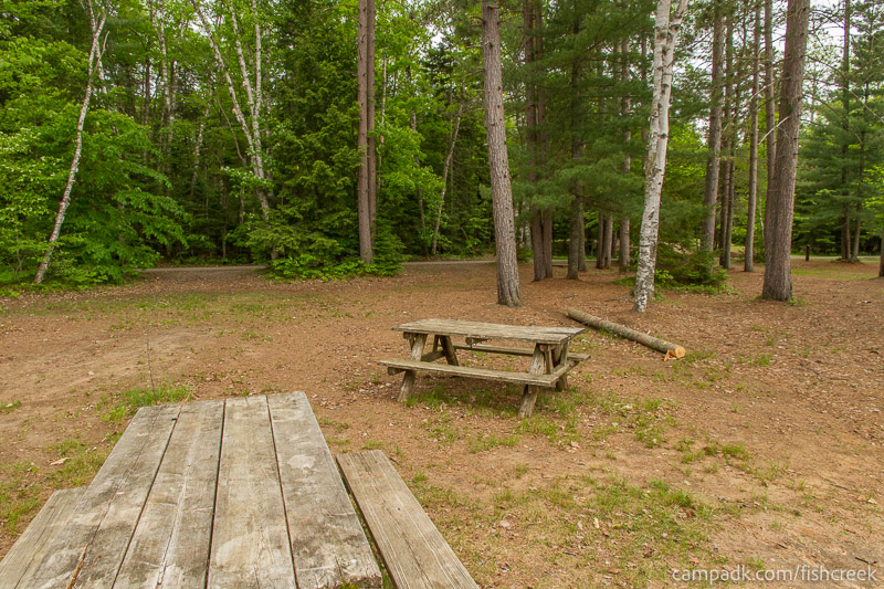 Campsite Photo of Site 300 at Fish Creek Pond Campground, New York - Looking Back Towards Road