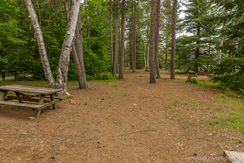 Campsite Photo of Site 303 at Fish Creek Pond Campground, New York - Cross Site View
