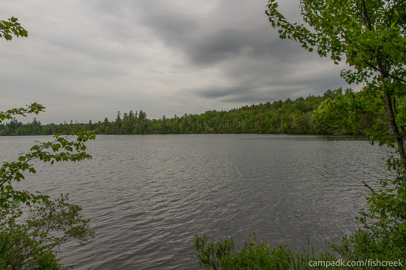 Campsite Photo of Site 303 at Fish Creek Pond Campground, New York - View from Shoreline